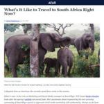 Things to Know Before Traveling to South Africa in 2021